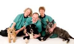 orchard house vets